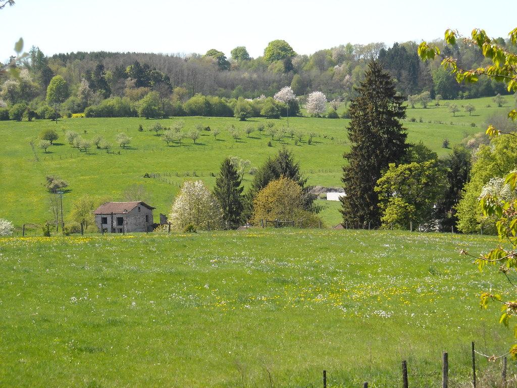 99 l agriculture paysanne chronique libre for L agriculture
