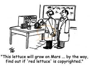 """-""""Cette laitue poussera sur Mars, en conséquence regardez si """"laitue rouge"""" est une marque déposée""""."""